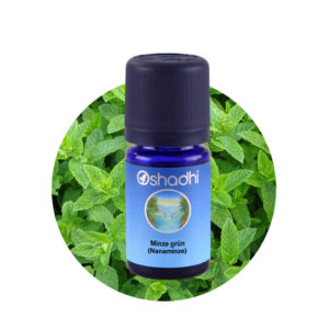 Ätherisches Öl Minze grün (Nanaminze)