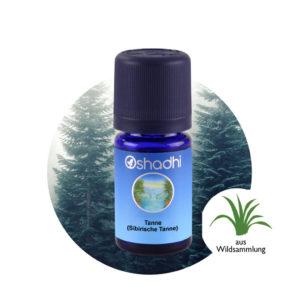 Ätherisches Öl Tanne (Sibirische Tanne)