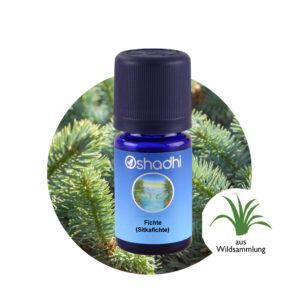 Ätherisches Öl sitkafichte sitka spruce Picea sitchensis