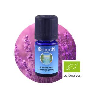 Ätherisches Öl Lavendel herb (Lavandin grosso) bio